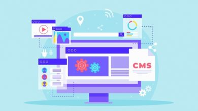 Photo of Design and development of CMS websites