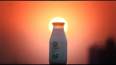 Photo of How To Maintain a Healthy Lifestyle Using A2 Milk
