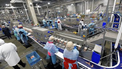 Photo of Global Poultry Processing Equipment Market by Equipment and by Region